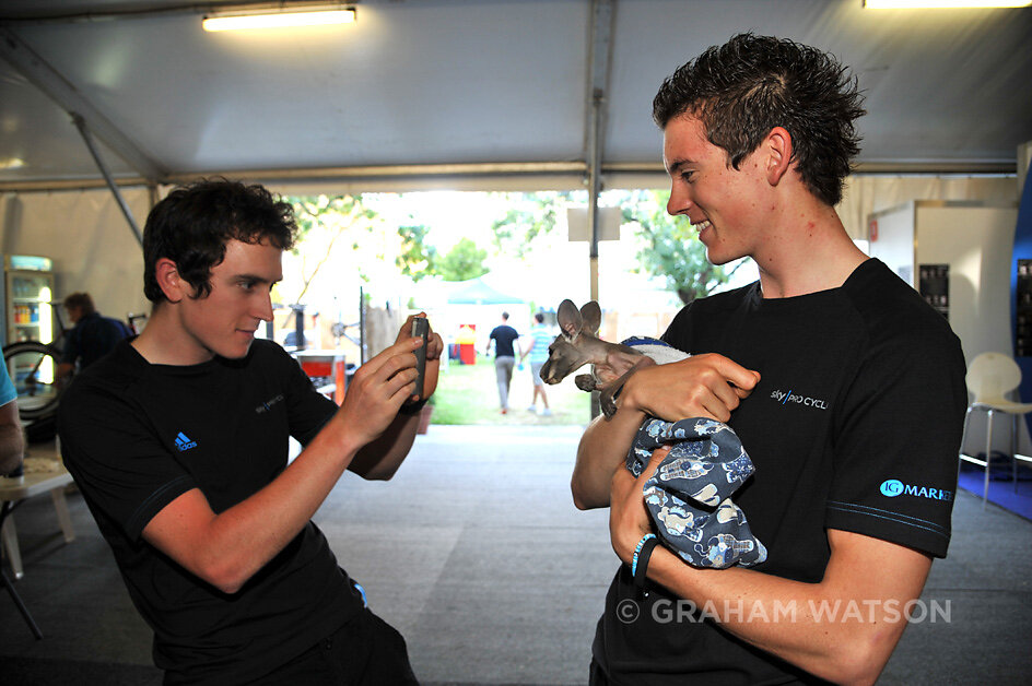 TOUR DOWN UNDER - FURRY FRIENDS